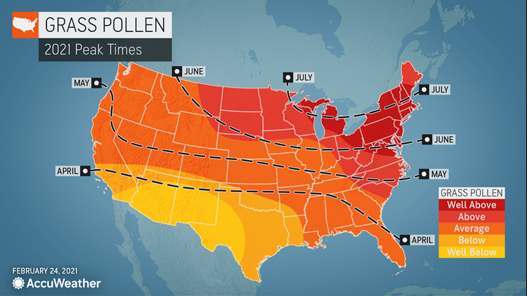 When will allergy season peak in 2021? An allergy forecast