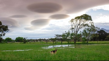 Think you've spotted a UFO? It could be one of these lenticular clouds