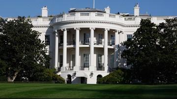 Democrats unveil 20 candidates for first debates