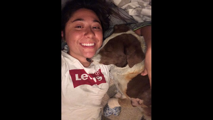 Dog found 'protecting the only house left on the block' after Camp Fire in Paradise