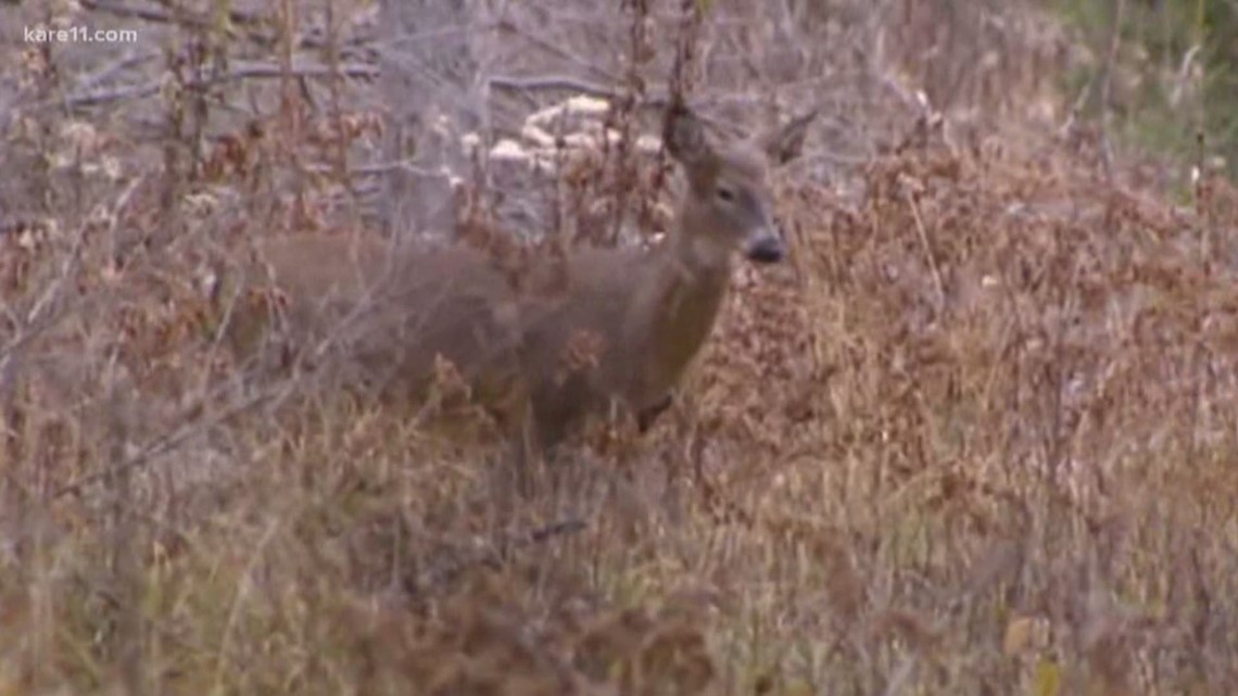 Walz proposes $4.57M to combat CWD in Minnesota herd