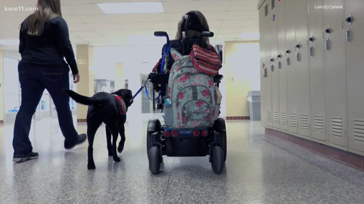 Can Do Canines offers help to people with disabilities through service dogs