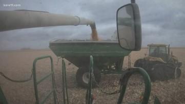 Minnesota farmers scramble for propane