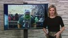 Judge rules Packers fan can't wear team colors on Soldier Field sidelines