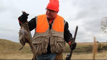Pheasant opener declared a success in Austin