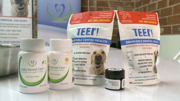 MN startup takes innovative approach to dental health in dogs, humans