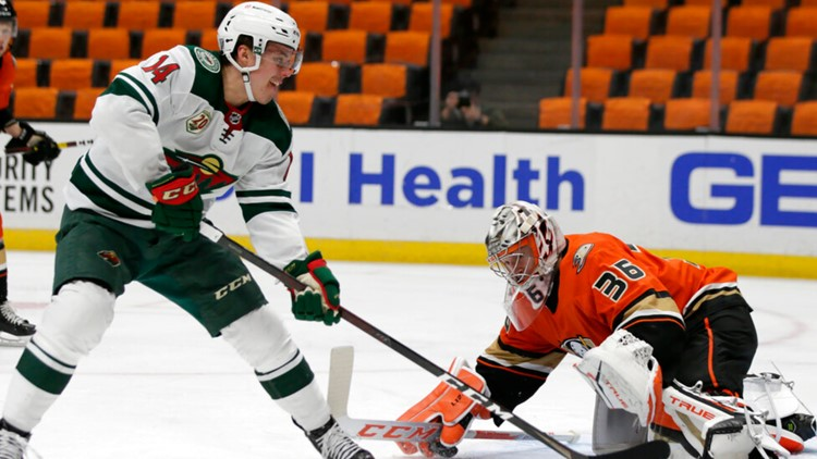 Wild back on track with 3-1 win over Ducks