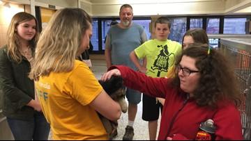 Local program helps teens with developmental disabilities socialize