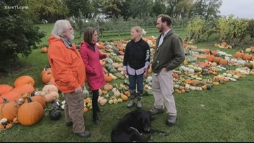 Grow with KARE: Pumpkin season