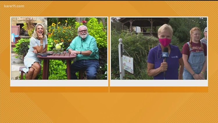Grow with KARE Q&A: Hornets, fungus and live questions from the Minnesota State Fair