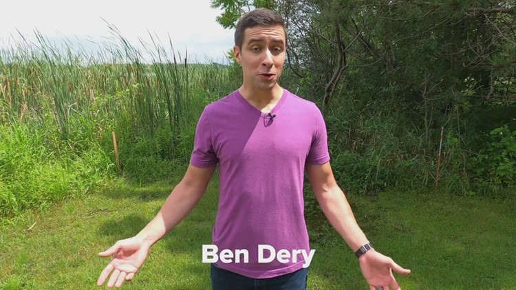 11 Things To Know About Meteorologist Ben Dery