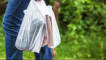 Mpls council member reintroduces Bring Your Own Bag ordinance