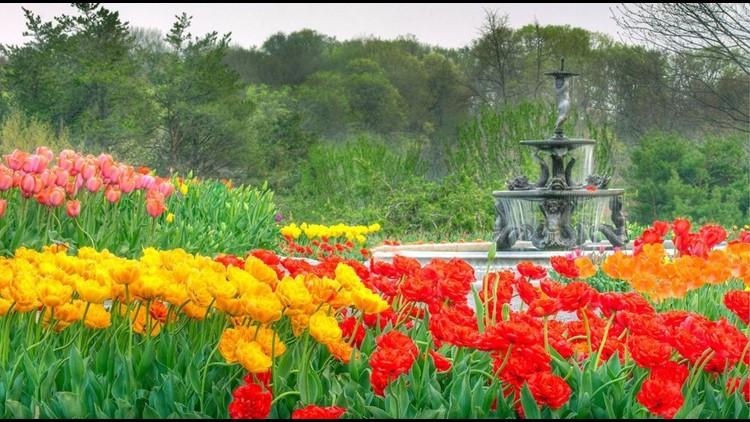 GROW-WITH-KARE. Vote now for the Minnesota Landscape Arboretum! - Vote Now For The Minnesota Landscape Arboretum! Kare11.com