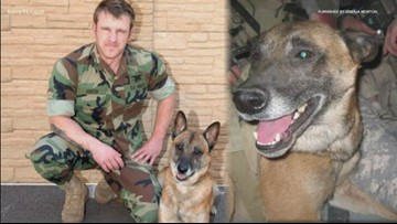 Navy Seal trains K-9s to target, take down school shooters
