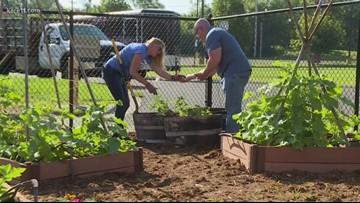 Grow with KARE: Cargill Giving Garden