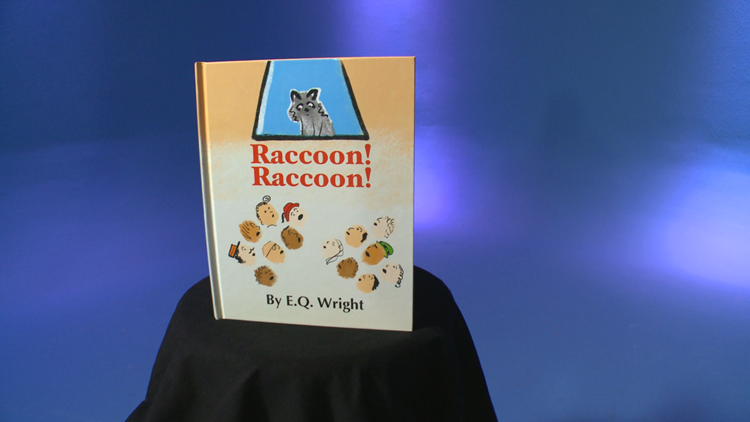 St. Paul author's picture book on MPR Raccoon inspires new stories