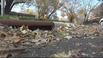 Keep your storm drains clear