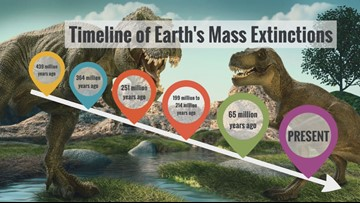 Explore more with Sven: Timeline of mass extinctions