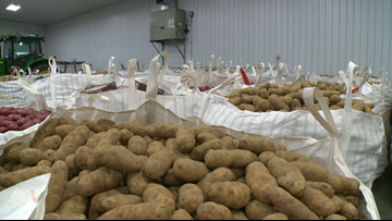 Central MN farm donates potatoes for Thanksgiving meals