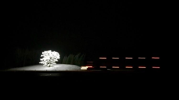 A semi passes by Jerry Lagerson's tree along I-35 near Faribault, Minnesota