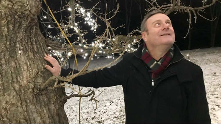 Andy Black rests a hand on the tree he flew from England to see