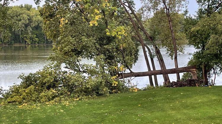 YOUR PHOTOS: Overnight storm damage