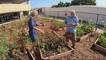 Grow with KARE: Veggie Garden Check-up