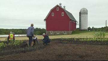 Grow with KARE: The Arboretum Farm