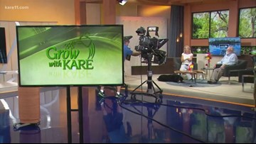 Grow with KARE: August 10 Q&A