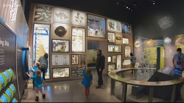 Grow with KARE: Bell Museum