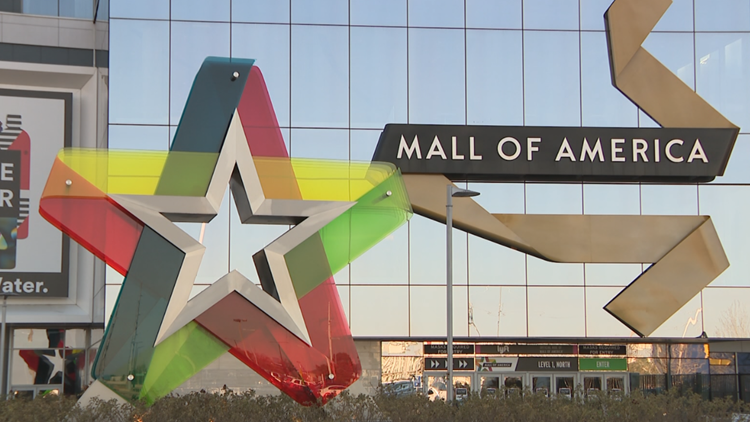 Small businesses team up with Mall of America to weather the pandemic storm