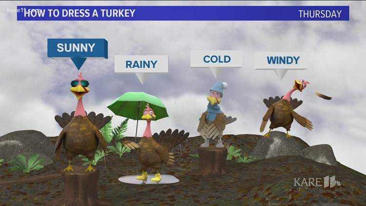 Bel loses it over Thanksgiving turkey animation