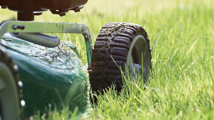 Tips for getting your yard prepped for spring