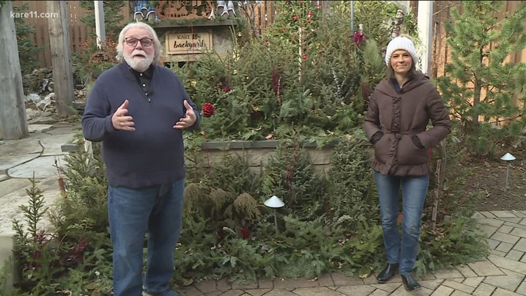Grow with KARE: Winter greens for indoors and out