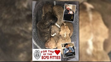 Puppies! Cops show love for dropped-off orphans