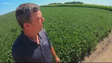 Minnesota farmers concerned over ethanol waivers