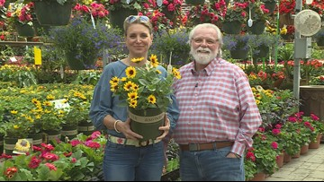 Grow with Kare: Annual of the month