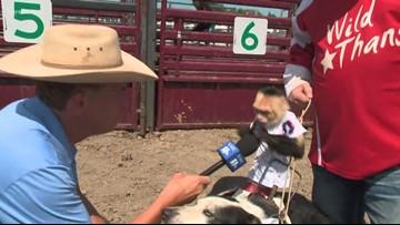 Perk at Play: Hamel Rodeo