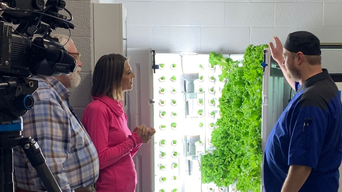 Grow with Kare: Ultra-local lettuce for Benilde-St. Margaret's students