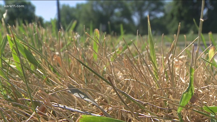 More drought restrictions in place for metro cities