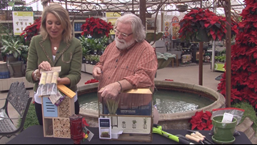 Grow with KARE: Gifts for gardeners