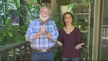 Grow with KARE: Bringing outdoor plants inside