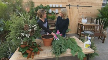 Grow with KARE: Spruce up your winter pots!