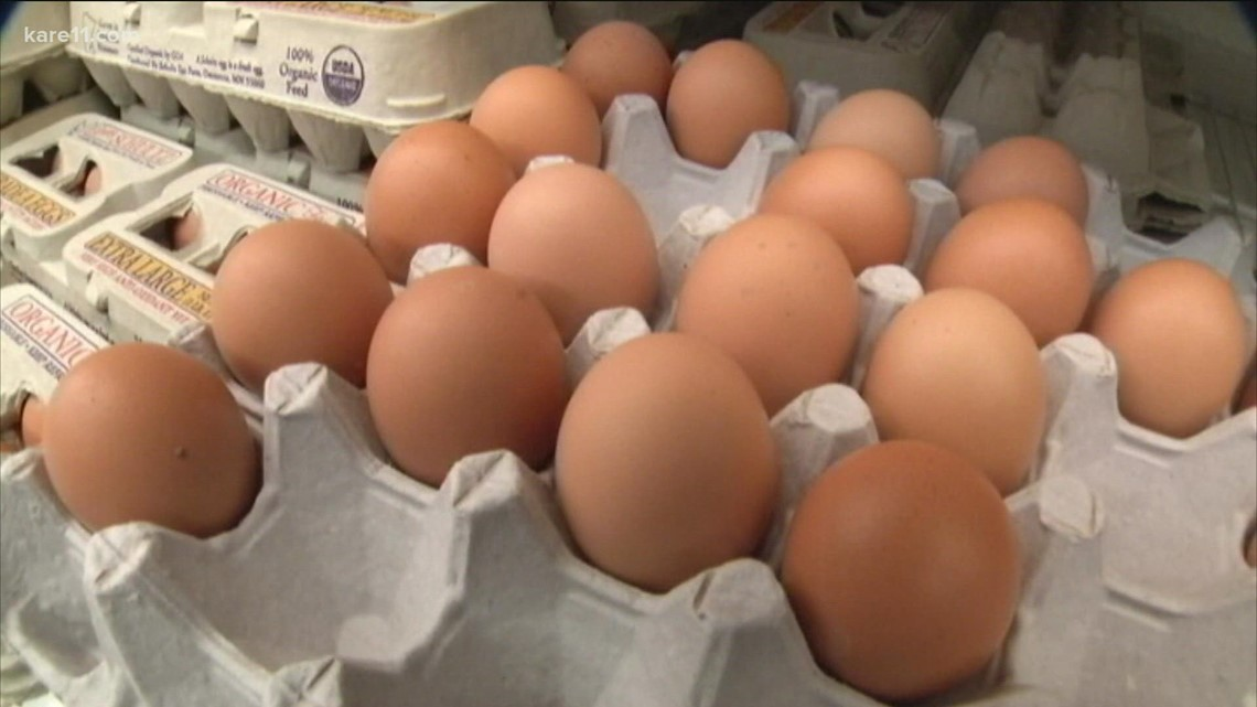 MN egg producer to donate more than a million eggs as settlement