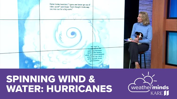 WeatherMinds Books: Spinning Wind and Water