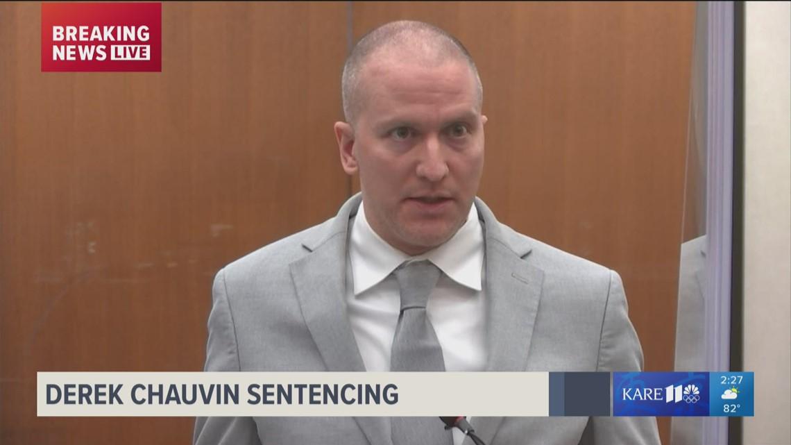 Derek Chauvin makes brief, cryptic statement at sentencing