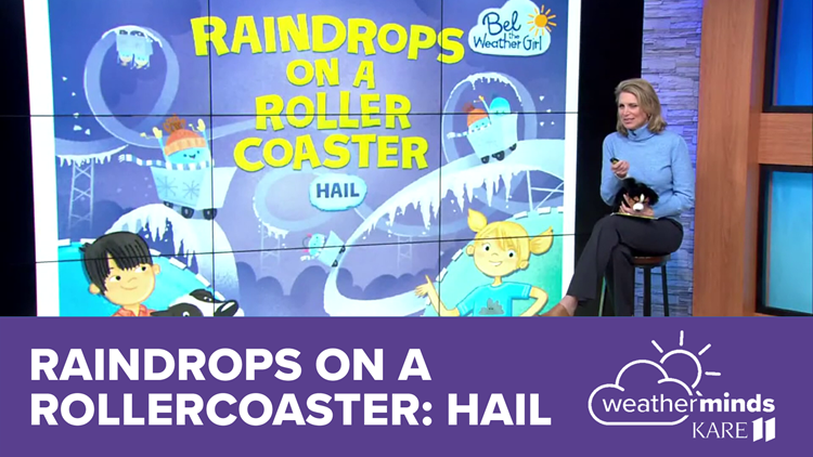 WeatherMinds Books: Raindrops on a Rollercoaster