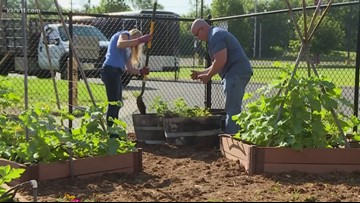Grow With KARE: Cargill Giving Gardens