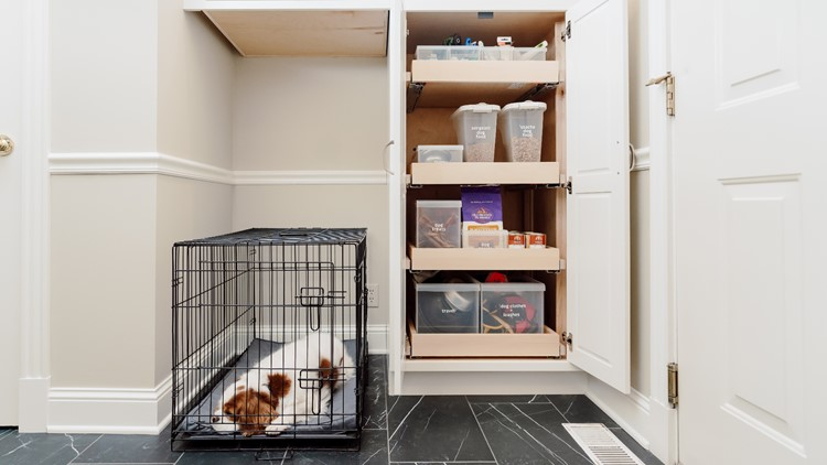 Organization tips for pet owners