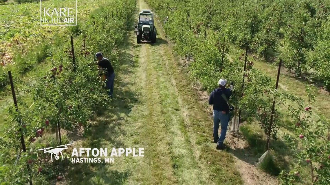 KARE in the Air: Afton Apple